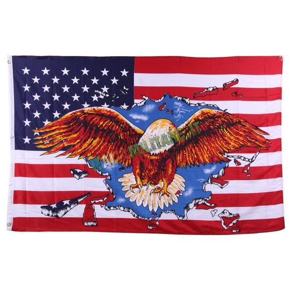 Bandiera America con Aquila